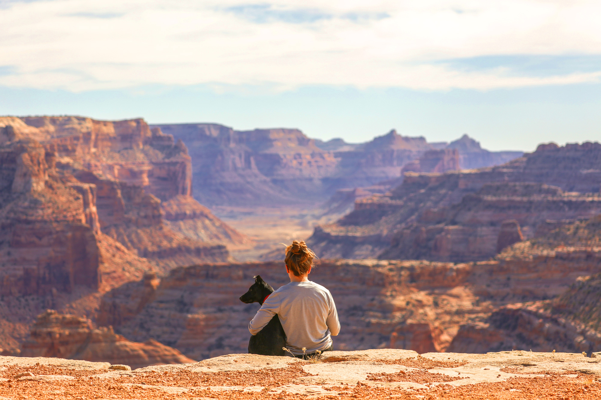 patrick hendry dog adventure in little grand canyon